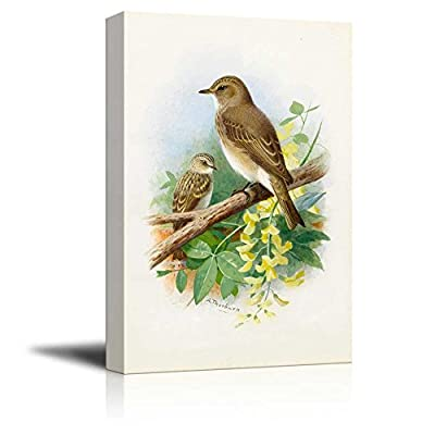 Illustration of 2 Birds Perched onto a Tree Branch 24
