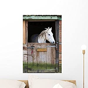 Horse Stable Wall Mural By Wallmonkeys Peel And Stick Graphic (24 In H X 16  In W) WM243886 Part 54