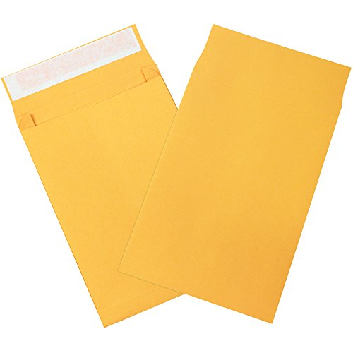 BOX USA BEN1065 Expandable Self-Seal Envelopes, 10
