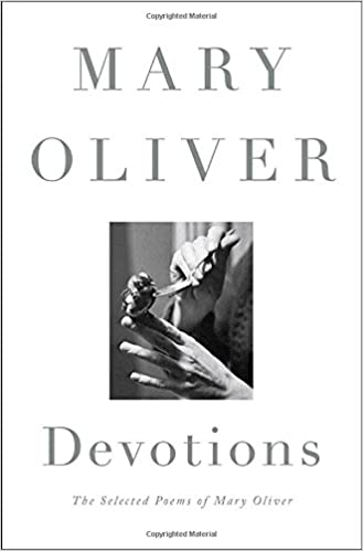 Image result for devotions mary oliver