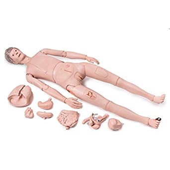 958ba9f8a4 Amazon.com: 3B Scientific 1018816 P10/1 Patient Care Manikin PRO ...
