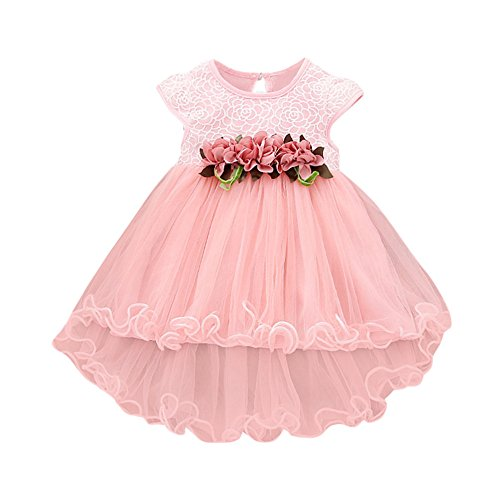 SIN vimklo Baby Girls Dress, Toddler Girls Floral Princess Tulle Dresses Pink
