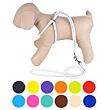 CollarDirect Rolled Leather Dog Harness Small Puppy Step-in Leash Set for Walking Pink Red White Blue Green Black Purple Beige Brown Yellow (White, XS)