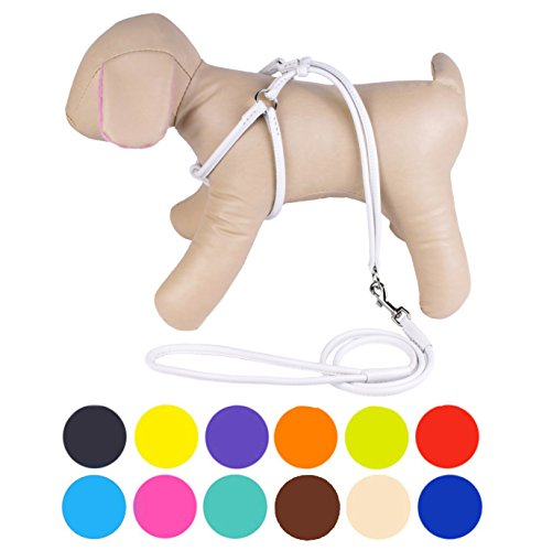 CollarDirect Rolled Leather Dog Harness Small Puppy Step-in Leash Set for Walking Pink Red White Blue Green Black Purple Beige Brown Yellow (White, XS) (Dog White Leather Harness)