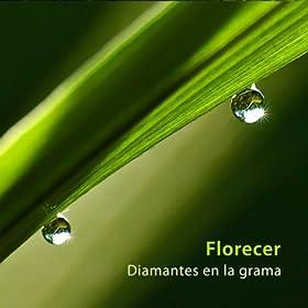 Amazon.com: Cuatro Preguntas (En 5): Florecer: MP3 Downloads