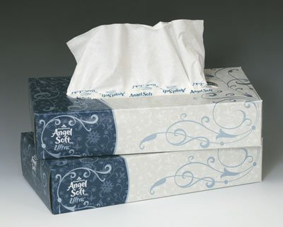 Angel Soft Facial Tissue - Flat Box (2-Ply) - 125 Tissues Per Box (30 Boxes) - AB-310-1-15