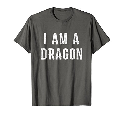 Mens I Am a Dragon Halloween T Shirt Easy Costume Idea XL Asphalt -