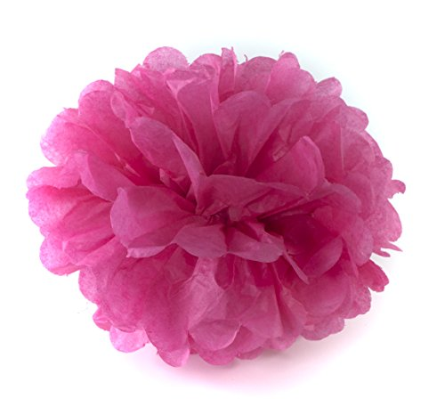 "ALL in ONE 8"" 10"" 14"" Tissue Paper Flowers Pom Poms for Wedding Party Holiday Decoration DIY Craft (Dark Pink 6pcs)"