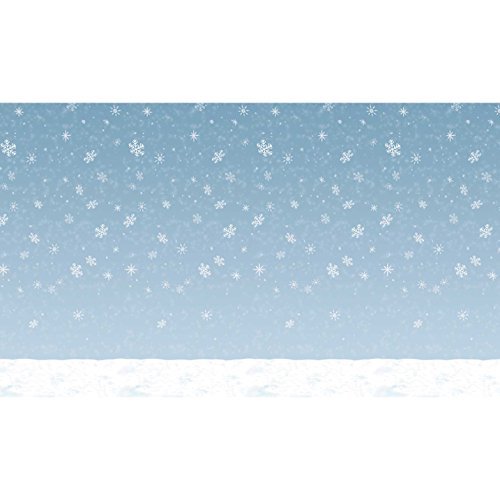 (Winter Sky Backdrop Party Accessory (1 count) (1/Pkg))