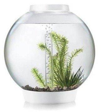 biOrb Classic 30 Aquarium with LED- 8 Gallon, White by biOrb