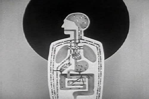 Alcohol and the Human Body: A vintage film about the Anatomy of Alcoholism Symptoms