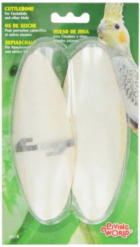 Living World Large Cuttlebone Bird Treat