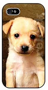 Case For Sumsung Galaxy S4 I9500 Cover Case Baby labradblack plastic case / dog, animals, dogs