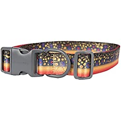 Pet Champion Fin and Foul Series No Pull Adjustable Hunting Dog Collar, Strategy Brook Trout, Large 1in x 16-26in