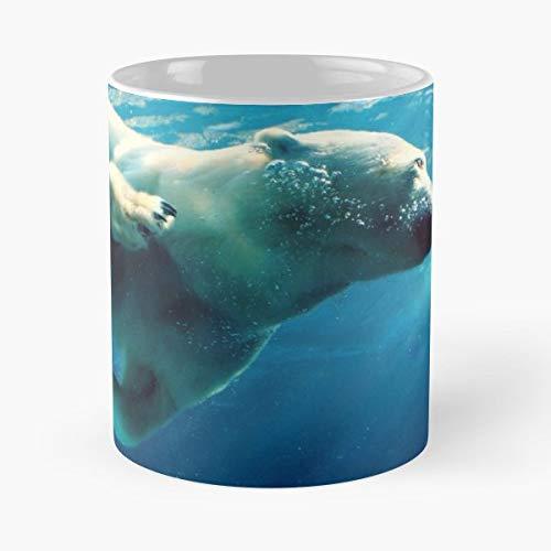 Zoo Pittsburgh Polar Bear Seaworld The Best Gift For Holidays Coffee Mugs