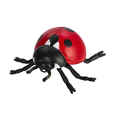Safari Ltd Safariology Collection - Life Cycle of a Ladybug - Includes Egg, Larva, Pupa, and Ladybug Replicas - Educational Hand Painted Figurines - Quality Construction from Safe and BPA Free Materials - For Ages 4 and Up: T