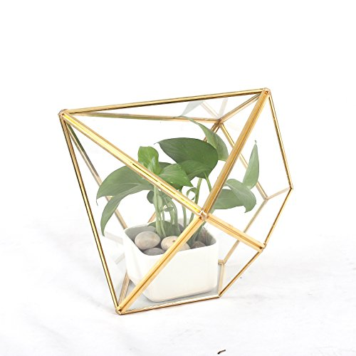 Geometric Glass Terrarium Wedding Card Box Copper Pyramid Vertical Brass Planter Tabletop Flower Pot 10.7 x 10.7 x 9.5 inches Gold for Fern Moss Succulent Plants (Personalized Planters Gifts)
