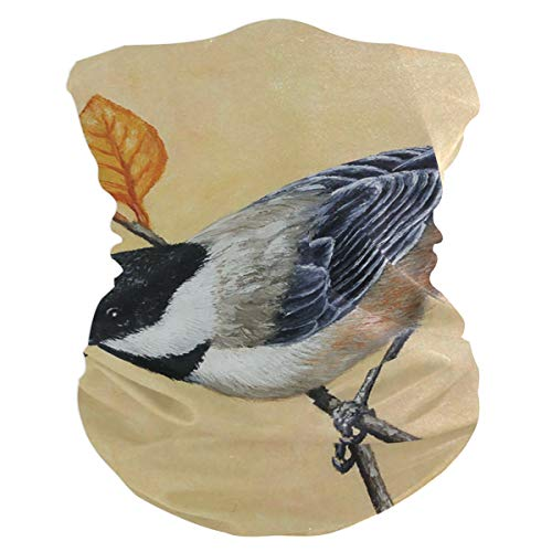 Chickadee And Autumn Leaves Painting Headband Womens Bandana Multifunctional Mens Balaclava, Neck Warmer, Face Mask, Collars Hatliner