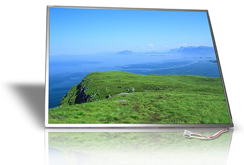 Brand New 15.4 WXGA Glossy Laptop Replacement LCD Screen(Not a Laptop) For Sony Vaio VGN-FE Series