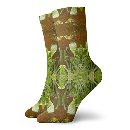 (Mens and Women Patterned Dress Socks Lake Foliage Border_2502 Colorful Funny Novelty Crazy Crew Socks)