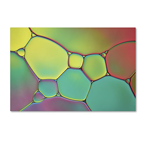 Trademark Fine Art Stained Glass I by Cora Niele, 16x24-Inch Canvas Wall (Fine Art Stained Glass)