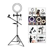 LIJUEZL LED Selfie Ring Light with 2 Cell Phone Holder Stand & Microphone Holder and Sound Card Shelf for Live Stream/Makeup,10in/26cm