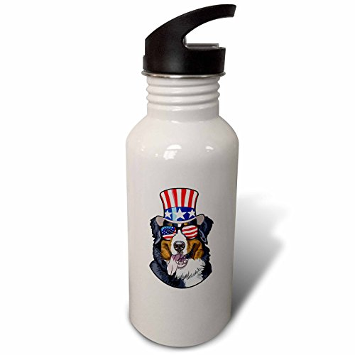 3dRose Patriotic American Dogs - Burmese Mountain Dog With American Flag Sunglasses and Top hat - Flip Straw 21oz Water Bottle (wb_282711_2) ()