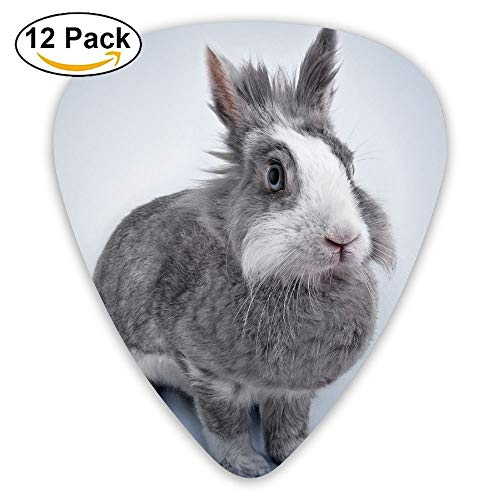 DFNRF Rabbit Pets Cute Animals Gray Guitar Pick 0.46mm/0.73mm/0.96mm, used for sale  Delivered anywhere in Canada