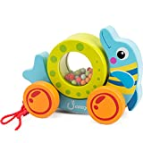 cossy Wooden Pull Toys for 1 Year Old, Rolling Dolphin Push Toy for Toddler Children Kids
