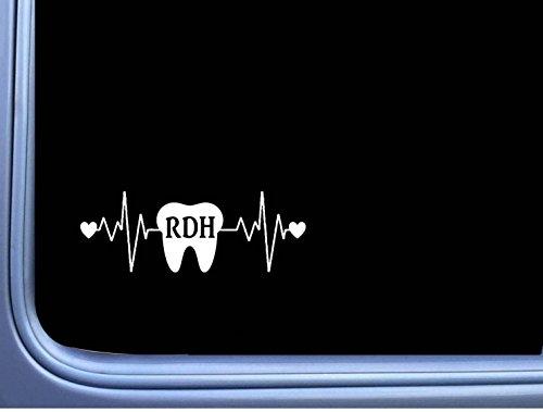 EZ-STIK RDH Tooth Lifeline M184 8 inch Window Decal Dentist Hygienist