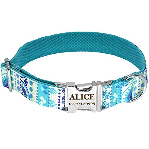 (JOYTALE Fashion Custom Dog Collars - Two Lines Personalized Text - Printed by Laser - Quick Release Metal Buckle - Turquoise L)
