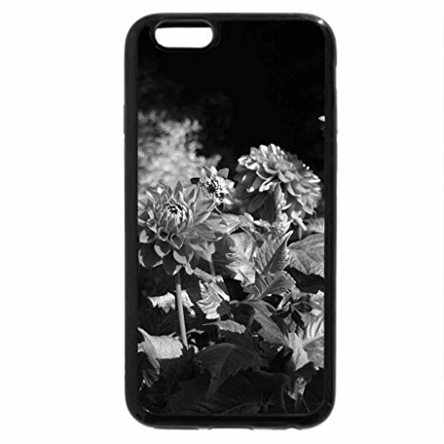 iPhone 6S Plus Case, iPhone 6 Plus Case (Black & White) - A fantastic day at Edmonton garden 10