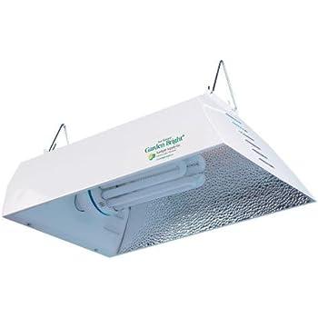 Amazon Com Compact Fluorescent Cfl 45w Perfect Daylight