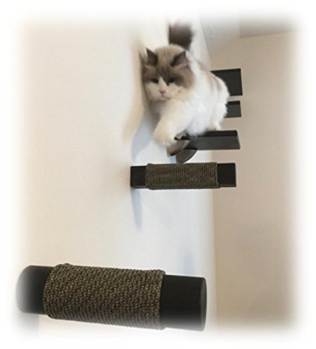 Contempo Floating Cat Post Step Shelf (1pc) by Purrfectly Catastic | Handcrafted solid hardwood climbing post | Space-saving wall-mounted cat furniture | Choice of shape and wood finish by Purrfectly Catastic Creations