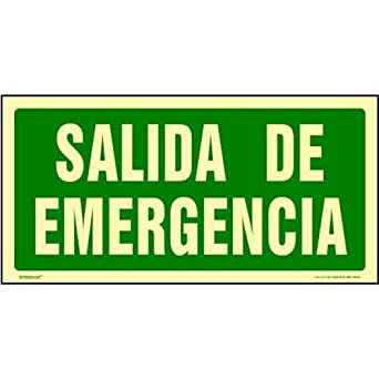 CARTEL PVC LUMINICENTE SALIDA EMERGENCIA 907029PF: Amazon.es ...