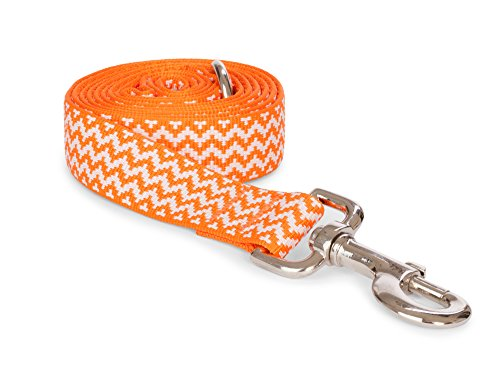 "fabdog Chevron Stripe Dog Lead Orange (Large, 1"" x 5 ft)"