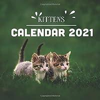 """Kittens: 2021 Wall Calendar - 8.5""""x8.5"""", 12 Months - Cute Baby Cat"""