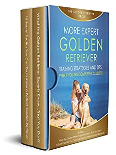 More Expert Golden Retriever Strategies and Tips: Even If You Are Completely Clueless