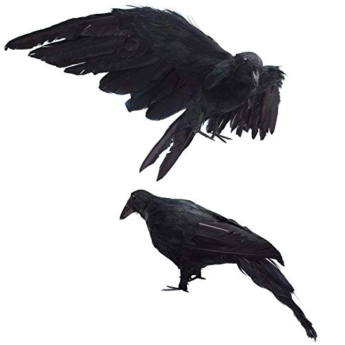 Fake Black Birds Halloween (2-Pack Realistic Crows Lifesize Extra Large Handmade Black Feathered Crow for Halloween Decorations Birds, L (13 inch+12)