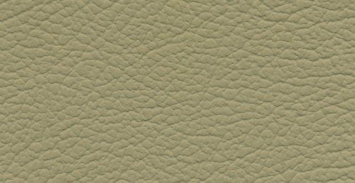 acme nis07012 3117 ivory italian leather seat