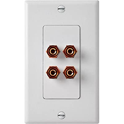 HiFi Works 30021 HFWWP-2 2-Connection Speaker Wallplate (Discontinued by Manufacturer) from HiFi Works