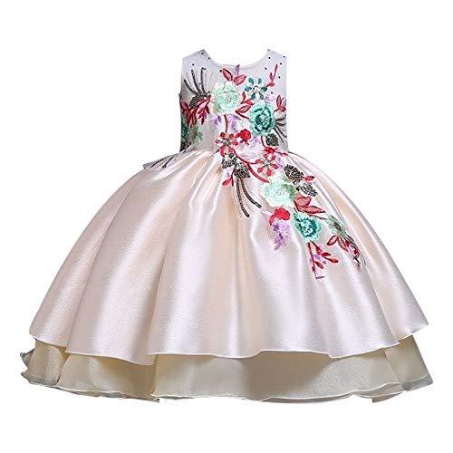 WZXSMDY Vestido De Las Niñas Falda Bordada Arco Vestido Lindo ...