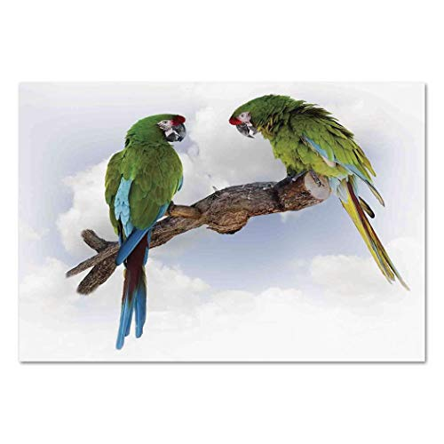Large Wall Mural Sticker [ Parrots Decor,Two Parrot Macaw on a Branch Talking Birds Gifted Clever Creatures of the Nature,Green White Brown ] Self-adhesive Vinyl Wallpaper / Removable Modern -