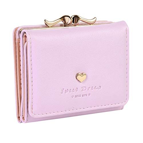 Damara Womens Metal Frame Kiss-lock Small Clutch Cards Holder Wallet,Purple