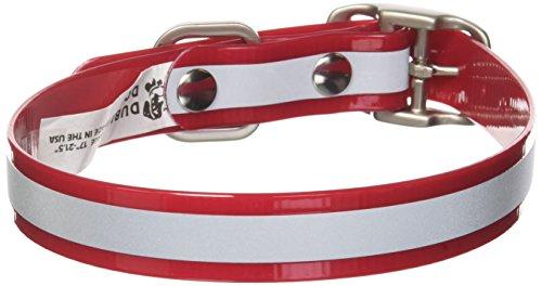 Dublin Dog 17-Inch to 21.5-Inch KOA Reflective Waterproof Dog Collar, Large, Red