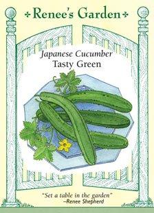 Cucumber - Japanese Tasty Green Seeds (Garden Cucumber)