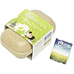Paw Pods Biodegradable Pet Casket, Small Pod