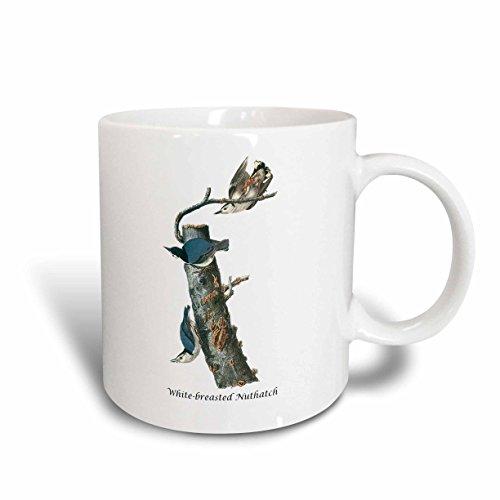3dRose 114044_2 White-breasted Nuthatch by John James Audubon Ceramic mug, 15 oz, ()