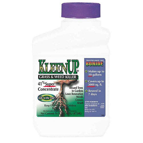 Kleenup 41 Percent Concentrate Herbicide 1 Pint
