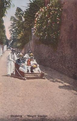 - G1452 Portugal, Madeira Mount Sledge Postcard